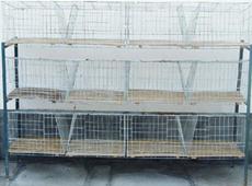 鸡鸽兔笼及食盒饮水器等养殖笼具/笼子/笼具