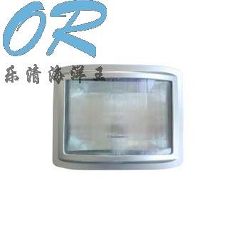 乐清海洋王 NSC9720 防眩通路灯, 防眩通路灯,节能眩通路