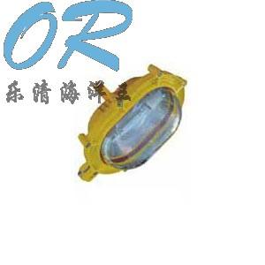 BFE8120 内场防爆应急灯 乐清海洋王