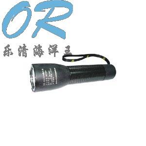 JW7630 乐清海洋王 全方位防爆电筒