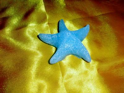 海洋系列-海星