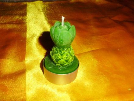 水果系列-菠萝
