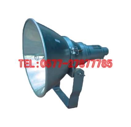 NTC9200 J1000W防震型超强投光灯 海洋王灯具