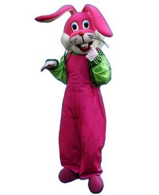 供应卡通礼仪兔服装|卡通服装|卡通人偶服装