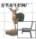 安平县牛栏网