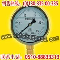 耐震压力表系列