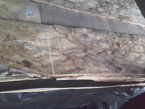 供应各种天然树榴木皮