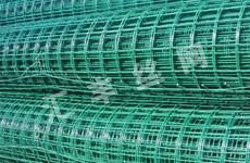 铁丝电焊网