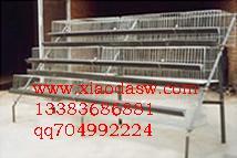 鸡鸽兔笼鸽子笼兔子笼狐狸笼貉子笼养殖笼网饲养笼具