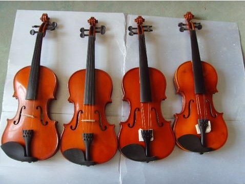 普及云杉、枫木小提琴