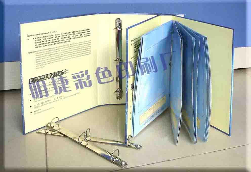 东莞彩卡,色卡,惠州吊牌,样品册,博罗印刷厂,纸卡,白盒,天地盒
