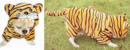 宠物用品 狗狗衣服 短毛绒