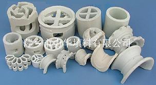 陶瓷散堆填料(瓷环)