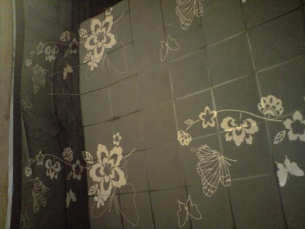 彩色不锈钢蝶恋花形黑钛镜面花纹板