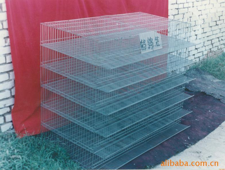 强壮笼具出售养殖笼,鹌鹑笼,兔笼