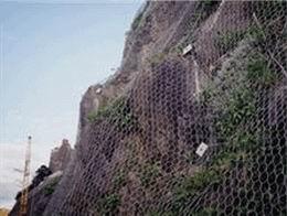 落石防护网