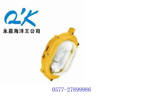 海洋王防爆灯 海洋王强光灯 BFC8120 内场强光防爆灯 海洋王灯具