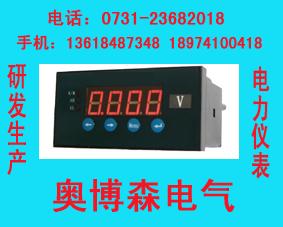单相电压表QY-CD194V