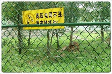 安平县宝祥金属织网厂的形象照片