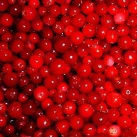 供应越桔天然红色素(花青素)
