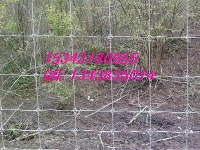 牛栏网,草原围网,养殖用网,刺绳隔离栅