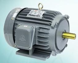台湾高崎AEHL/AEUL高效率电机