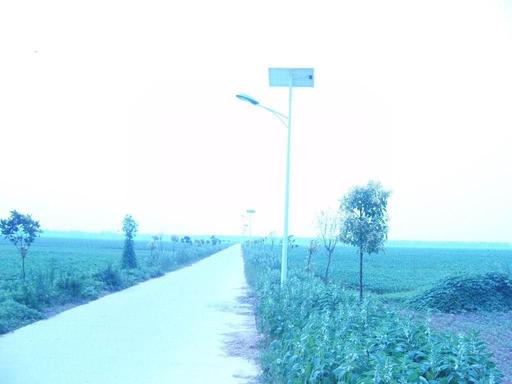 寿县朱厂村一批一批太阳能路灯点亮夜空