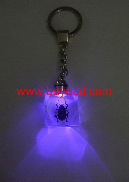贝雅新颖梦幻LED饰品,贝雅昆虫琥珀闪光钥匙扣