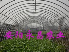 新型无支柱钢塑复膜温室大棚骨架机 安阳永昌农业科技