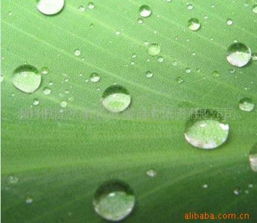 k11防水涂料的配方防水剂的作用石灰王的价格