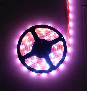 上海汽车专用LED软灯条Y3528FS60