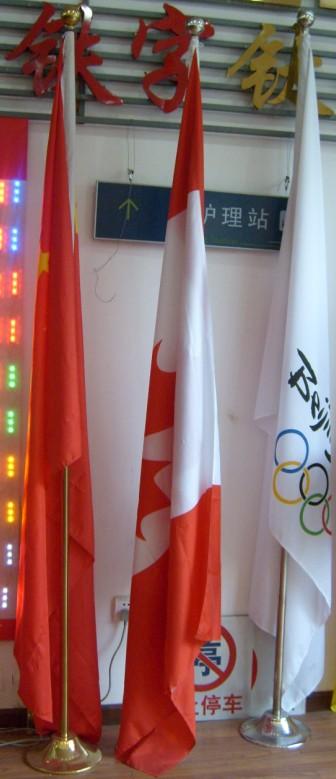 上海迎风旗印刷 会议旗 生产 党旗 制作