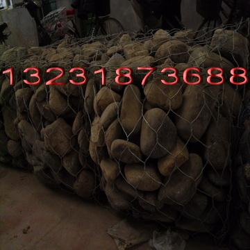 镀锌石笼网,五绞格网,河道防护网-安平龙亿石龙网厂