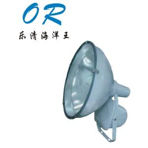 乐清海洋王ZT6900防水防尘防震投光灯