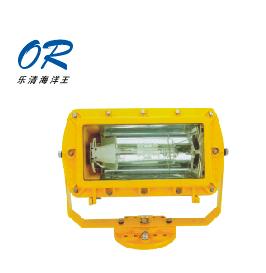 海洋王BFC8100防爆泛光灯 J250 J400
