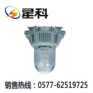 NFC9180 防眩泛光灯 NFE9180