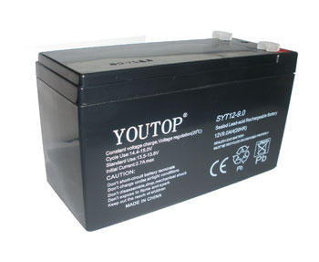 12V9AH蓄电池/UPS电池/电动喷雾器电瓶