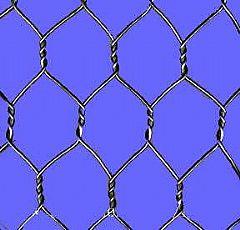 供应石笼网格宾网双绞格网、五铰网箱