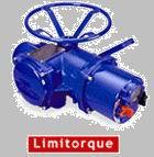 美国利密托克Limitorque电动执行器