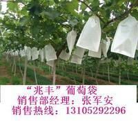 8优质葡萄套袋,葡萄袋山东莱阳银通纸业