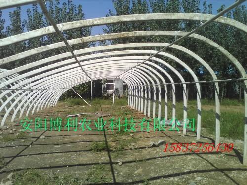 钢塑复膜无立柱温室大棚骨架机安阳博利