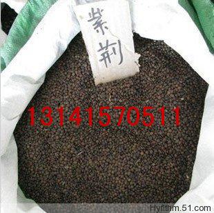 商品;木荷种子.五角枫种子.美国红枫种子等