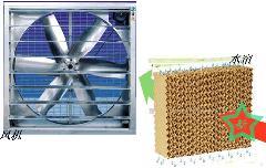 水帘+风机=负压降温系统 当今最省钱的通风、降温系统
