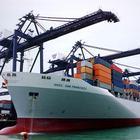 青岛海运 青岛国际货代 青岛订舱代理