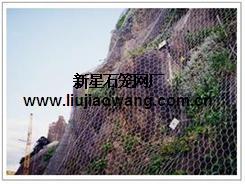 供应边坡防护网 落石防护网 河北石笼网