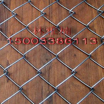 镀锌铁丝网,勾花编织网,边坡绿化网,龙亿铁丝网厂