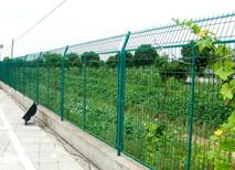 铁丝防护网 山鸡围网 养殖围网 草原网 围墙网
