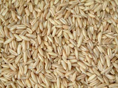 求购大麦小麦磷酸氢钙