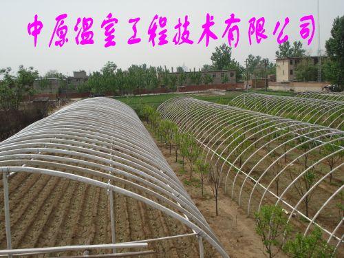 蔬菜大棚支架 钢管镀塑无土栽培大棚骨架 中原温室工程