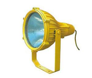 BTC8210 防爆投光灯 海洋王 海洋王照明 海洋王灯具 